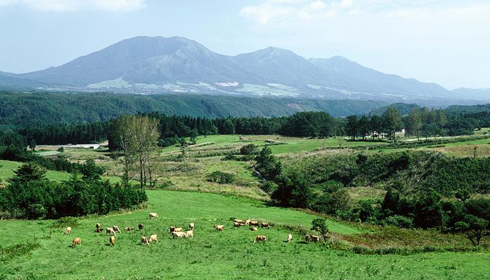 「岡山県 蒜山高原」の画像検索結果
