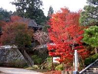 真庭紅葉めぐりと三浦邸・椎の木御殿の昼食